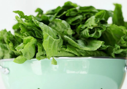 spinach story